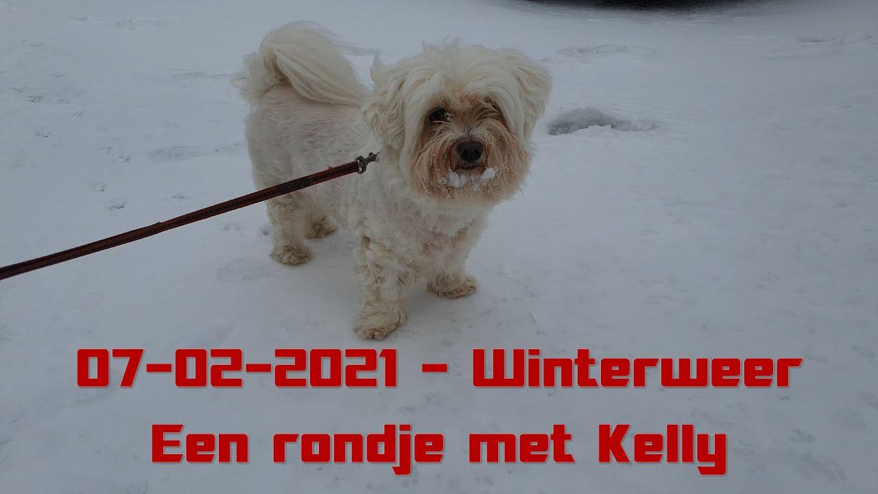 Rondje met Kelly in het prachtige winterweer || 07-02-2021