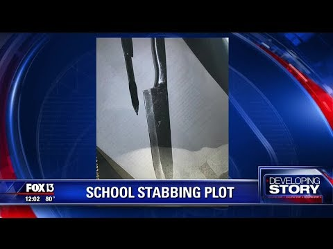 Bartow PD: Girls planned to attack and kill at least 15 students