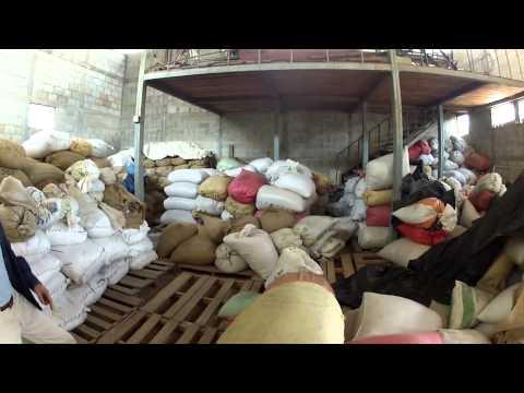 Bird Rock Coffee Roasters and Direct Trade Coffee
