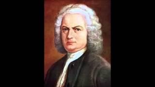 И  С  Бах Концерт для скрипки с оркестром ля минор 2 я часть