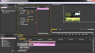 60 Second Premiere Tutorial : Create the Ken Burns Effect (Still Image Animation) -HD-