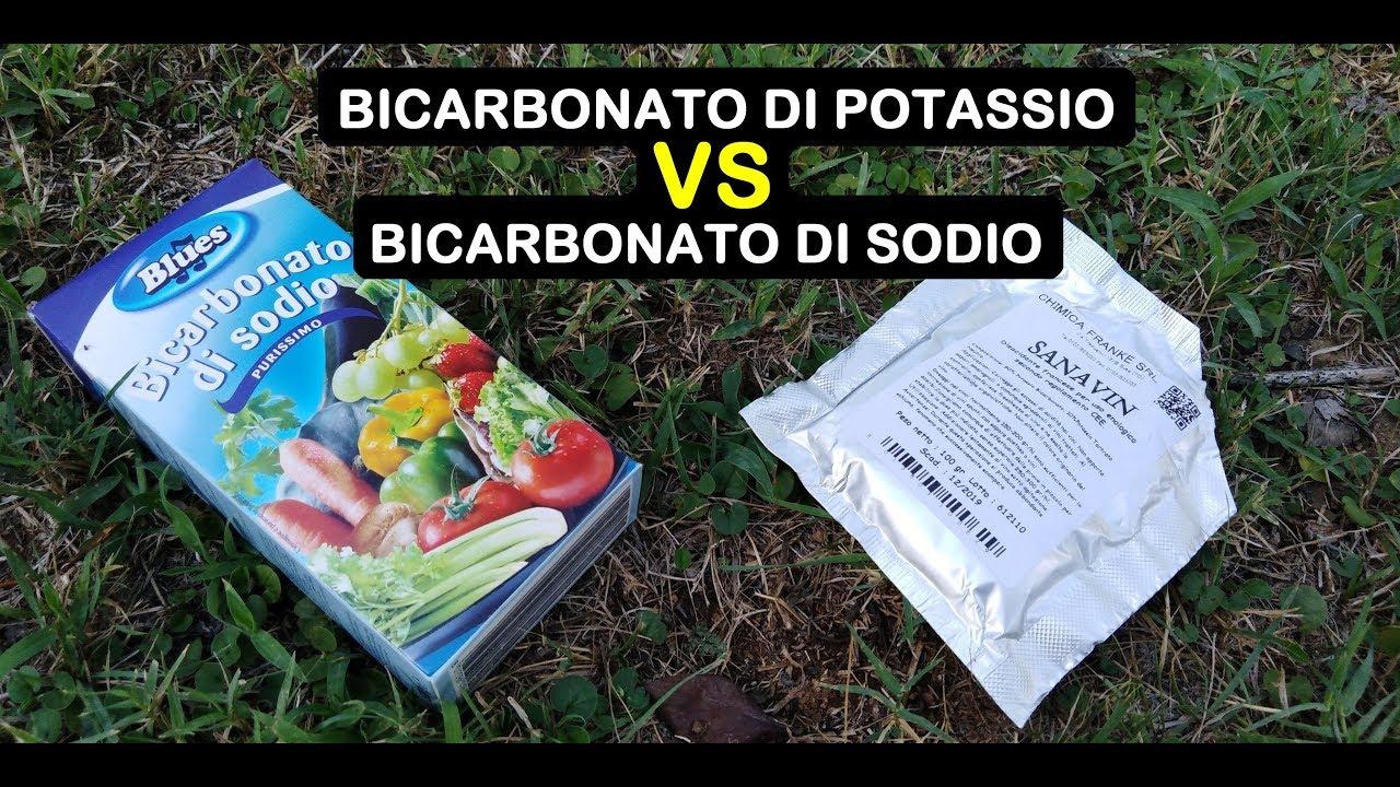 Bicarbonato di potassio: dosaggio e trattamenti bio