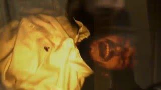 Echophobia-The Woe Song