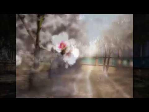 Изображение предпросмотра прочтения – ЕгорНовиков читает произведение «Весенние воды (Еще вполях белеет снег…)» Ф.И.Тютчева