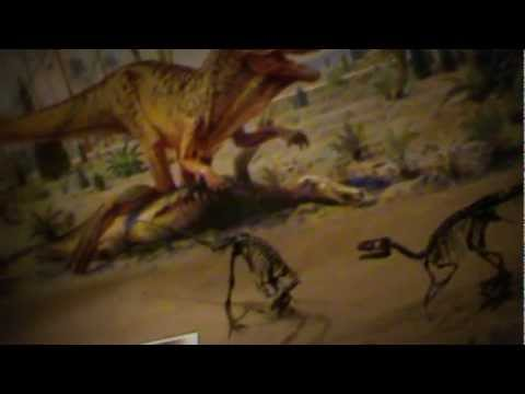 Royal Tyrrell Museum Part2