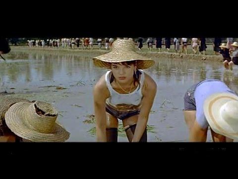 'Das Reismädchen' mit Elsa Martinelli (ital. Klassiker)