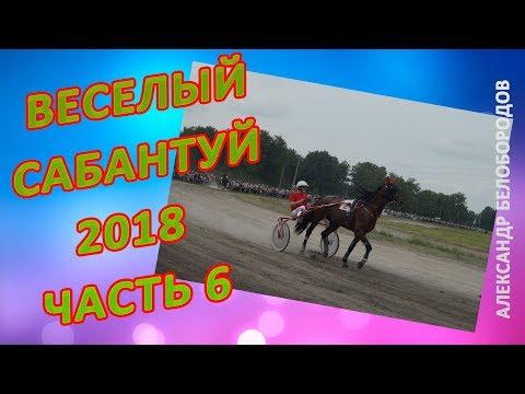 IX Всероссийский сельский