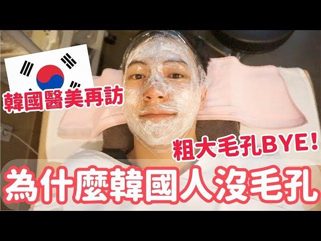 韓國醫美,揭開韓國人沒毛孔的秘密!我也要發光蜂蜜皮膚!毛孔針+草莓鼻管理 阿侖 Alun