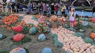 Золотая осень в Москве. В Красном Кубе - Хеллоуин. BLOG