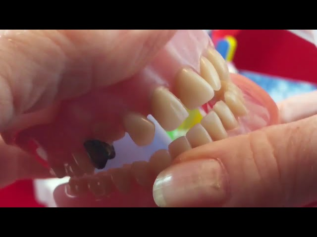 How to use a baby/fingertip toothbrush