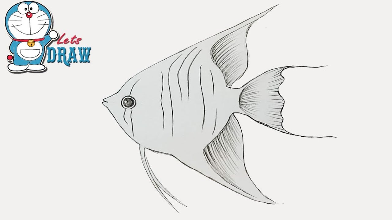 Uncategorized How To Draw A Good Fish how to draw rupchanda step by very easy youtube easy