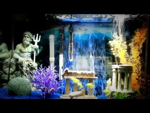 29 gallon aquarium w blue led bubble wand update youtube. Black Bedroom Furniture Sets. Home Design Ideas