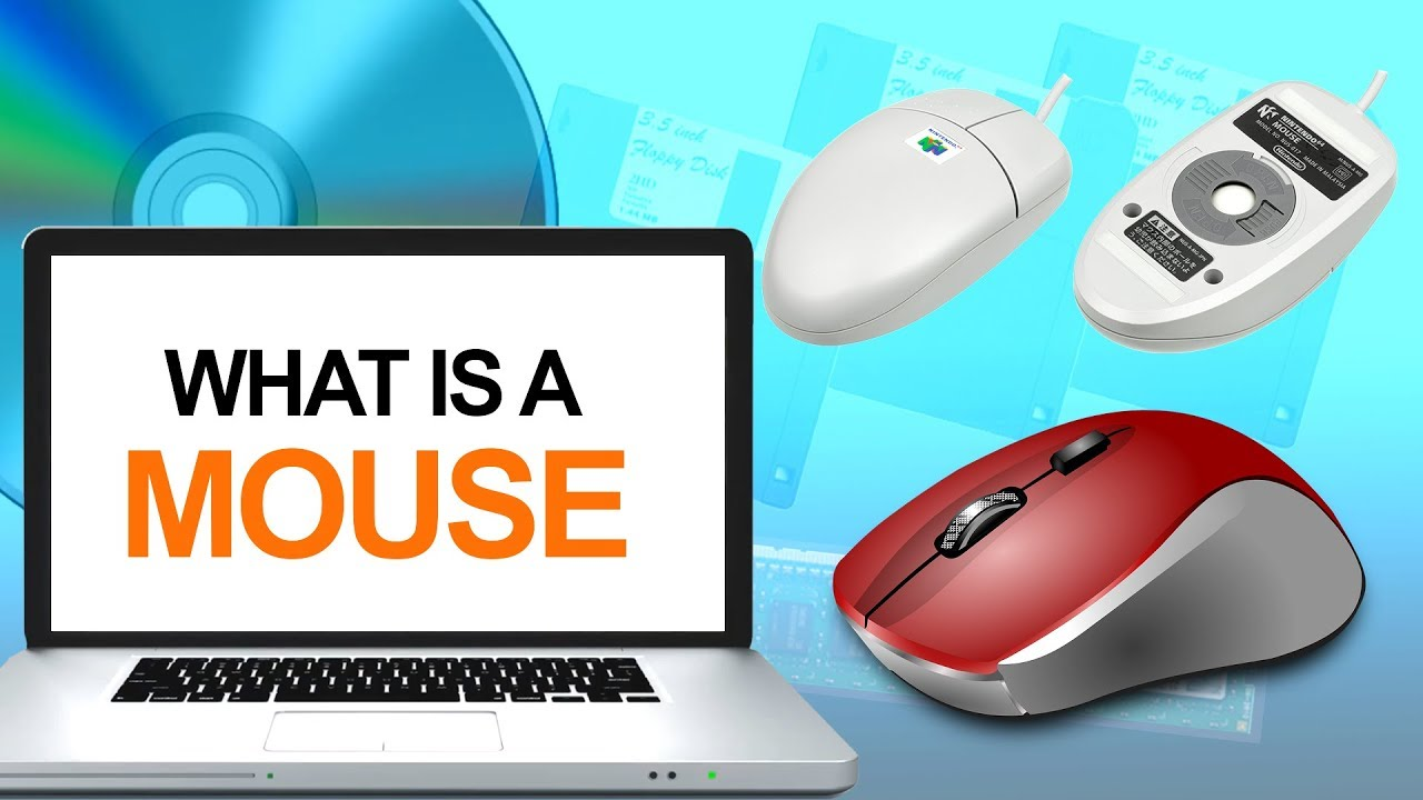 What is a Computer Mouse   Definition & Types of Mouse ...
