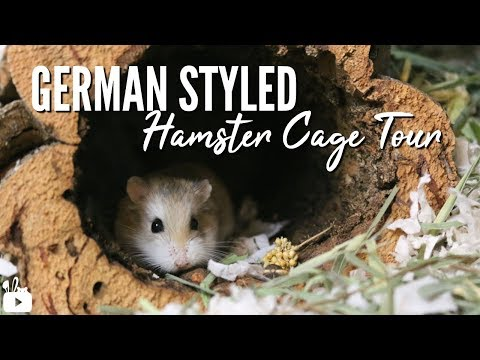german-inspired-hamster-cage-tour!-🌿