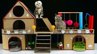 How to Make Amazing Cat House for Two  Adorable Kittens