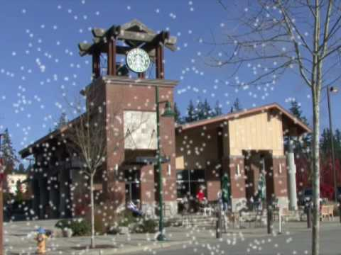 Mill Creek Town Center Video