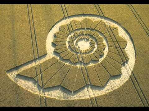 Robert Hulse & David Cayton - Crop Circle Tests