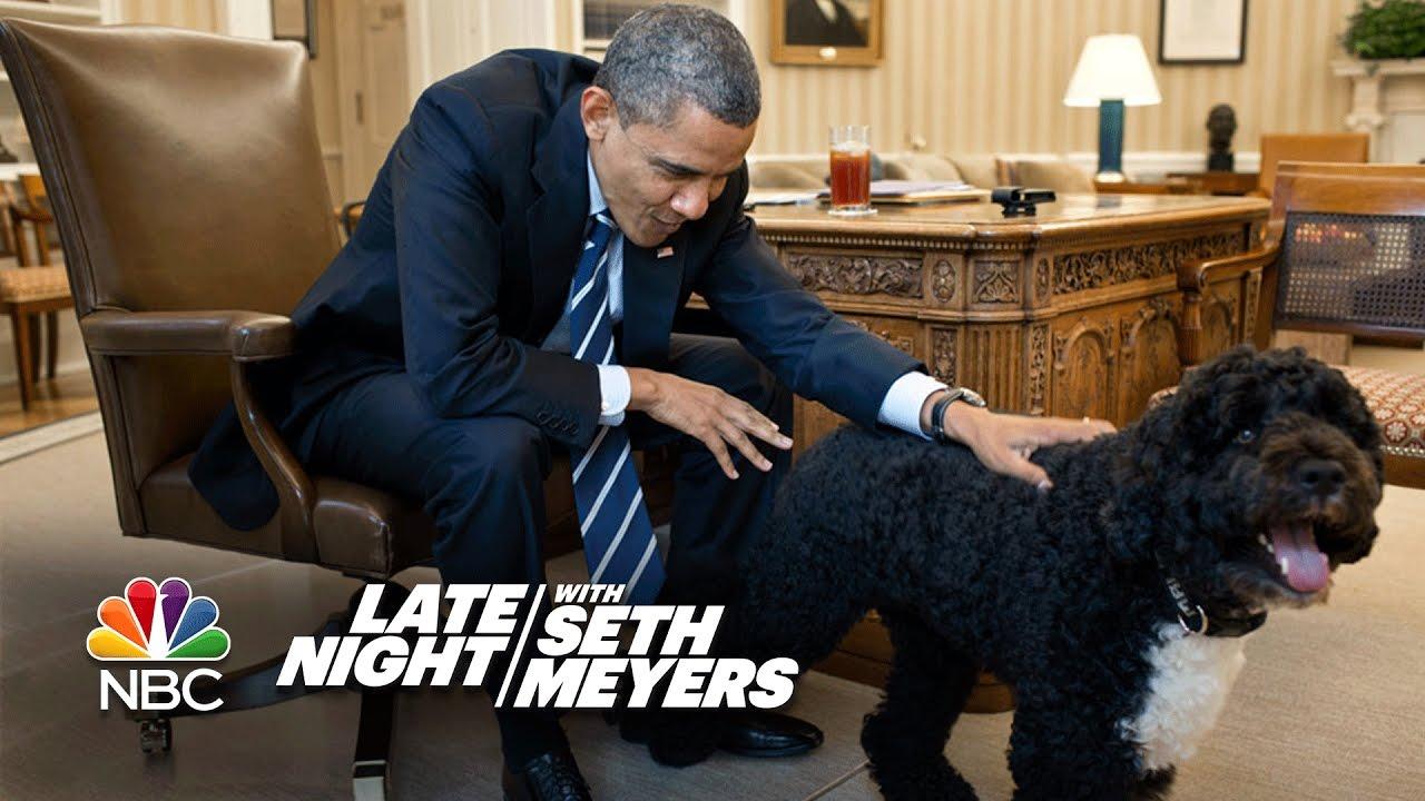 President Obama Dog Breed