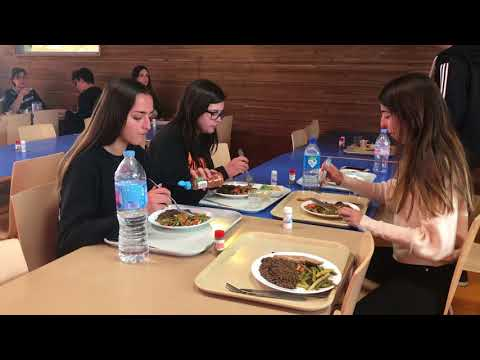 A day and boarding IB school in Paris area, France: Notre-Dame International High School