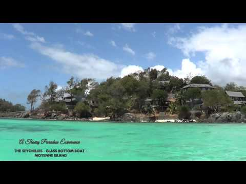 The Seychelles Experience - Glass Bottom Boat - Moyenne