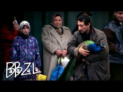 BaBa ZuLa - Tavus Kuşu Çalarım mp3