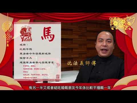 沈法義 - 2019 己亥豬年生肖運程 蛇、馬、羊篇