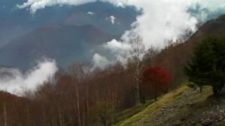 南アルプスエコーライン:御池山クレーター付近の紅葉