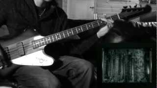 Parabol and Parabola Bass cover - TooL (HD)