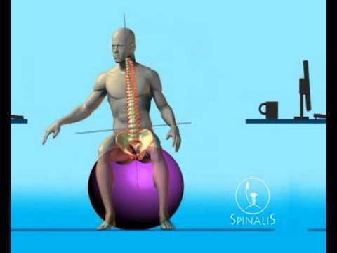 Bürostuhl ergonomisch ball  gesundes Sitzen auf dem ergonomischen Gesundheitsstuhl -Bürostuhl ...