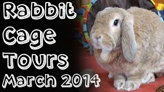 Budgetbunny: Rabbit Cage Tours *march 2014* Last Tours!!! Must Watch!
