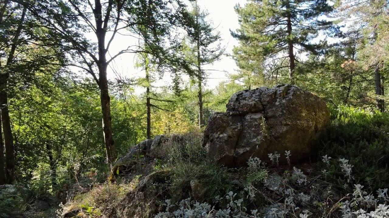 Giardino Pietra Corva : Giardino botanico alpino di pietra corva a romagnese oltrepò