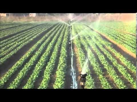 Gestione del sistema di irrigazione doovi for Sistema irrigazione