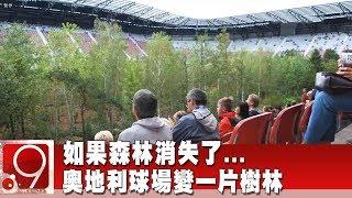 如果森林消失了   奧地利球場變一片樹林《9點換日線》2019.09.19