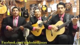 MEXICAN ROMANTIC TRIO IN LOS ANGELES: #ElAndariego #AlvaroCarrillo