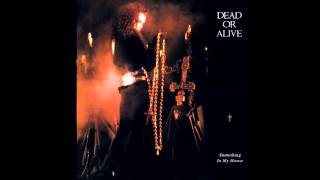 Dead or Alive - Something In My House (Flamenco Mix)