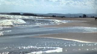 Strandimpressionen von Gruissan / Les Ayguades (FR)