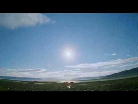 Midnight Sun Kinostart