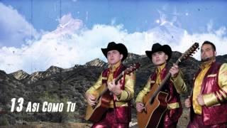 Asi Como Tu  - Los Plebes del Rancho de Ariel Camacho - DEL Records 2016