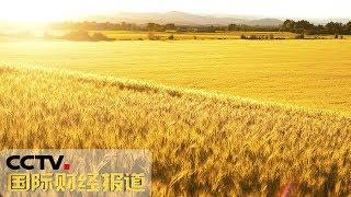 《国际财经报道》 20190924| CCTV财经