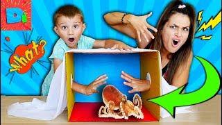 Что В Коробке??? Самый Лучший Челлендж Funny Challenge On Didika Tv