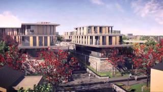 Introducing the Sibaya Precinct.