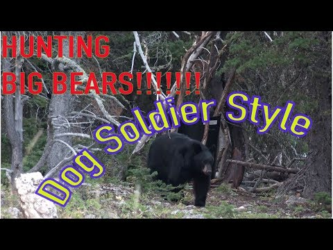 LEVER GUN SMACK DOWN! Bear Hunting in Wyoming with Winchester Mod 94 !!!!