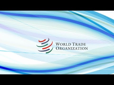 WTO meeting in Buenos Aires ends without major agreements