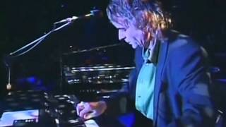 "Pink floyd - shine on you crazy diamond 1974 (album wish were here 1975)""live at knebworth"" 1990 hertfordshire, englanddavid gilmour guitars, vocals (g..."