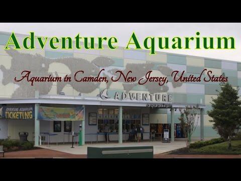 Visiting Adventure Aquarium, Aquarium in Camden, New Jersey, United States
