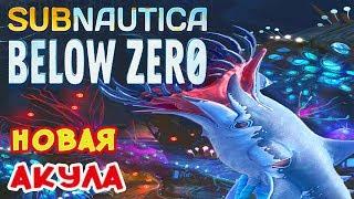 НОВЫЙ БИОМ и АКУЛА●Игра Subnautica BELOW ZERO Прохождение#12