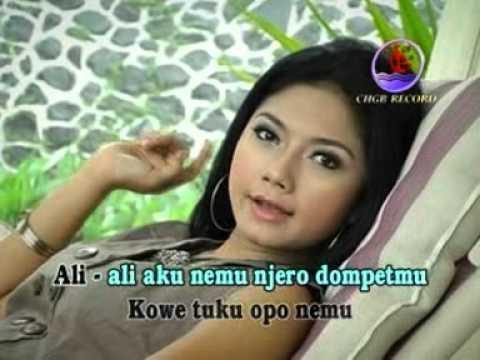 Jalok di Surung    By Rony elektro