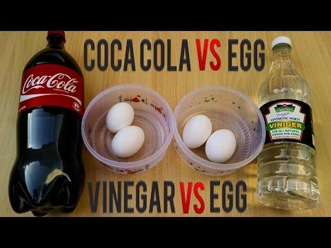COCA COLA Vs EGG Vs vinegar – Awesome...