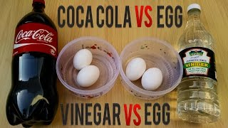 COCA COLA Vs EGG Vs vinegar – Awesome eggs fun life hacks and tricks