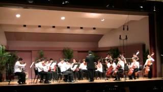 Skylife - David Balakrishnan (PMI 2012 String Orchestra)